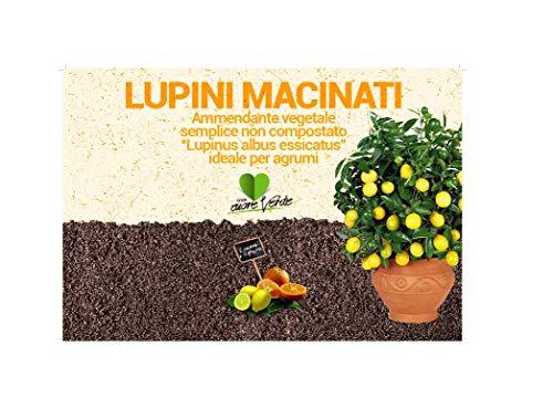 LUPINI MACINATI KG 25 - CONCIME PER PIANTE DI LIMONE,AGRUMI, ARANCI