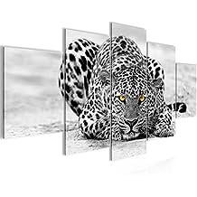 Suchergebnis Auf Amazon De Fur Wandbild Leopard