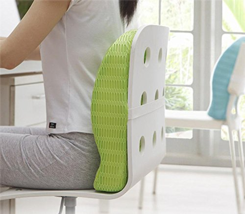 HealthSense Backrest Cushion with Memory Foam (SOFT SPOT - BC 21) - Grass Green