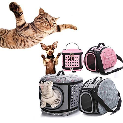 Danigrefinb Transporttasche für Haustiere, Reisetasche, tragbar, faltbar, atmungsaktiv, für Outdoor-Reisen