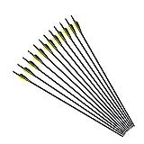 Funtress 12 piezas 30 'Fibra de carbono 3' / 4 'Flecha pluma de caza Flechas con puntos de campo Puntas reemplazables para arco recurvo y arco compuesto Dirigido o caza