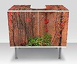 wandmotiv24 Badunterschrank Efeu mit roten Blättern wachsen auf einer roten Mauer Designschrank Bad M0789 Waschbeckenunterschrank Komplettbeklebung