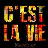 C'est La Vie (French Version Remix)