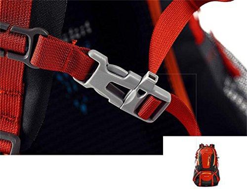 Professionali sport all'aria aperta borsa zaino uomini e donne sacchetto di alpinismo viaggiare a piedi ( Colore : Grigio , dimensioni : 45L ) Verde