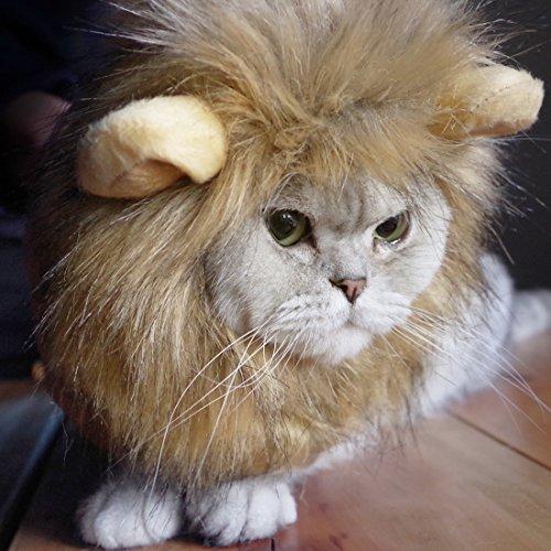 tze Löwe Mähne, PET Katze Perücke mit Ohren, Cosplay Kostüm für kleine, mittlere, große KITTY, passend für Holloween Weihnachten Party Festival (Lustige Holloween)