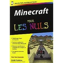 Minecraft pour les Nuls