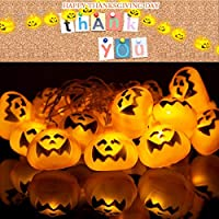 AUELEK Thanksgiving Decorations,20 LED Pumpkin String Lights Decoration,Waterproof Jack o Lantern String Lights,Battery Powered Pumpkin Lantern Decor for Thanksgiving Indoor and Outdoor Party