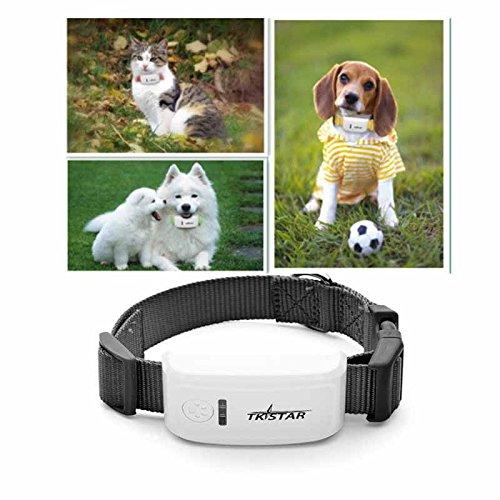 Hangang Pet GPS Tracker con Collar, Dog Anti Lost GPS Tracking Localizador de Localización GPS enTiempo Real, Collar para Perros Training GPS en Tiempo Real con La Aplicación Gratuita & Web Platform Rastreador de GPS ( Pequeños Niños Perros Mini Localizador Personal GPS para Mascotas / Perro) (TK909)
