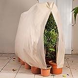 ProBache - Housse d'hivernage pour plante et arbuste 200 x 240 cm