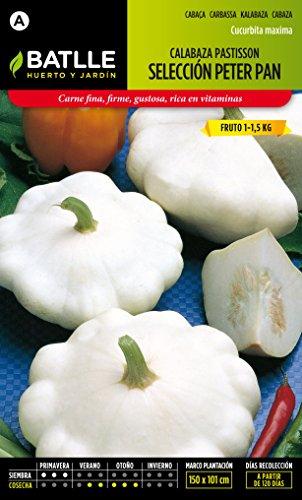 semillas-batlle-calabaza-patisson-blanca-peter-pan