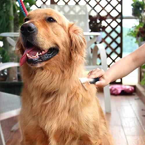 Zoom IMG-3 spazzola per cani pelo lungo