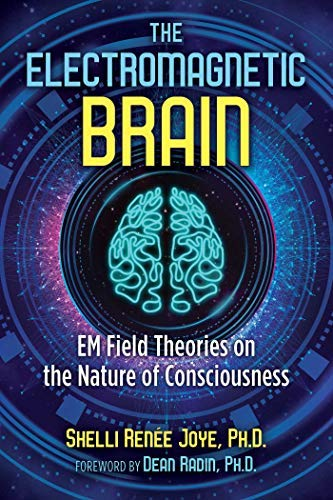 The Electromagnetic Brain: EM Field Theories on the Nature of Consciousness (English Edition)