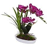 Bonsai Decoración Simulación en Maceta Suculentas de simulación Flores Decorativas Flores Artificiales
