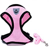 Locisne Mesh Tissu Dog Vest Harnais souple réglable confortable | Pet Chest Lead Walking Leash avec clip (Rose, Medium)