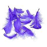 AmaCasa Federn ca. 270 STK.Gänsefedern Dekofedern Bastelfedern Dekoration 15 Gramm (Violett)