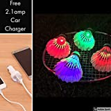 #6: CadetBlue Pack of 4 Light-up Night LED Light Shuttlecock for Badminton Sport with Free 2.1Amp Car Charger [SF046]