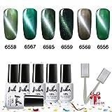Starter-Kit für Gel-Nägel, 6 Farben, UV, Cat-Eye, Gel Nagellack Maniküre Box Geschenk + Magnetstift C001 - Serie Aurora Green