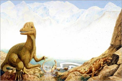 Poster 150 x 100 cm: Dilophosaurus Dinosaur, Illustration von Science Photo Library - hochwertiger Kunstdruck, neues Kunstposter