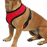 iiniim Haustier Harness Hund Netz Hundegeschirr Welpengeschirr Weste Hundehalsband Verstellbare Brustgeschirr für Hunde Mehrfabig Rot Large