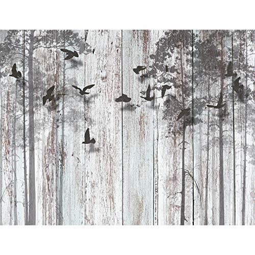 Fototapeten Abstrakt Holzoptik 352 x 250 cm Vlies Wand Tapete Wohnzimmer Schlafzimmer Büro Flur Dekoration Wandbilder XXL Moderne Wanddeko - 100{b3104662c08be5ff19b5c6238726afb61735d13f9b796b038b060ba219f99baa} MADE IN GERMANY -Vogel Grau Runa Tapeten 9104011a