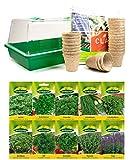 mgc24 Zimmergewächshaus Greenhouse Anzuchtset - Anzuchtschale mit Deckel und Belüftung - Komplettset mit 24 Torftöpfen + 2,5l Anzuchterde + 10 Sorten Kräutersamen