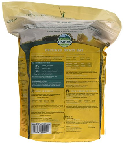 Oxbow Orchard Grass Hay, 425 g 4