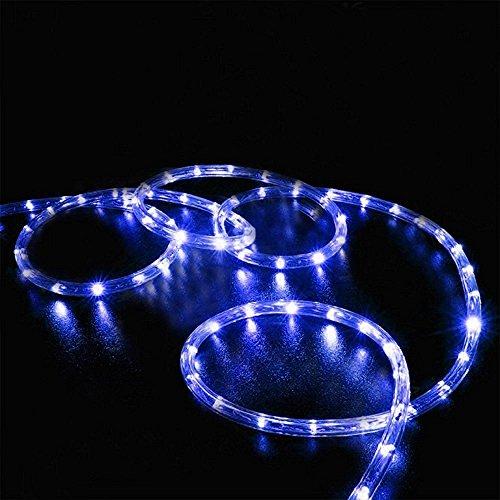 Wasserdichte Seil-Lichter, Solargarten-Lichter, 100 LED-feenhafte kupferne Draht-Lichter, dekorative Beleuchtung im Freien, Schnur-Lichter für Haus, Rasen, Hochzeit, Partei, Feiertag Festliche ()