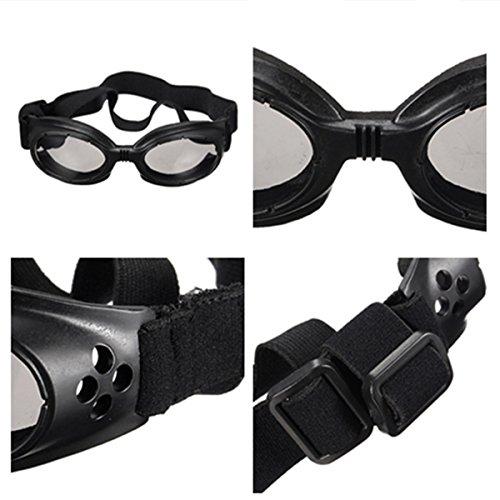 Brille für Haustiere – Hundesonnenbrille – Sonnenschutz - 3