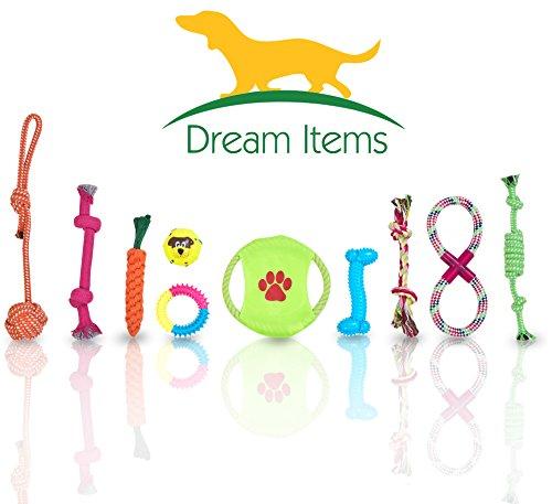 Hundespielzeug Set 10-teilig. Geflochten Seil, Ball, Fr… | 04260542340019