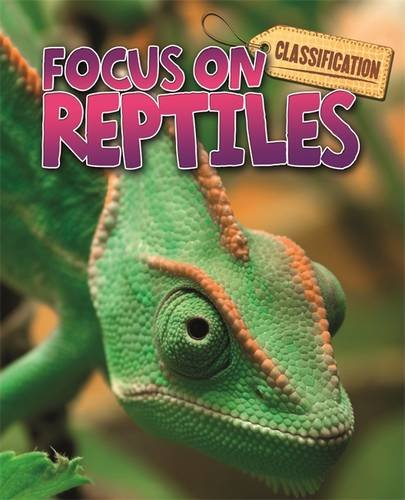 Reptiles (Classification: Focus on)