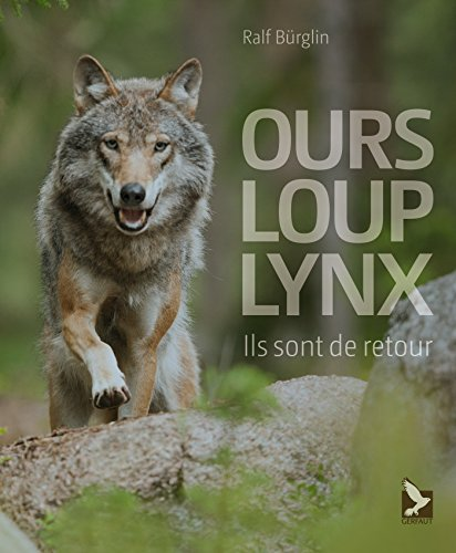 Ours, loup, lynx