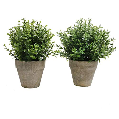 SHACOS 2er Set Pflanzen Künstlich Blumen Gras Kunstpflanze Bonsai Mini mit Topf Klein,Ideal für Tischdeko Haus Balkon Büro usw. -