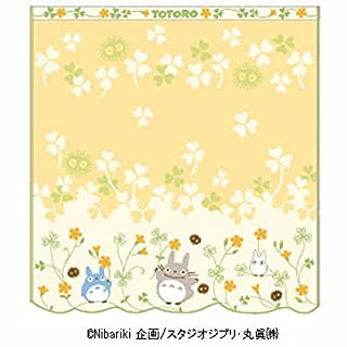 Air plants Dream 'Mini Handtuch Mein Nachbar Totoro Oxalis Studio Ghibli (34 × 35 cm) – Import Japan