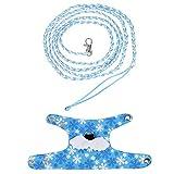 Fdit Imbracatura di Scoiattolo dell'animale Domestico Imbragature Gilet di Fumetto Vestiti con guinzaglio di Piombo per Furetto di Scoiattolo di cincillà Camminare di Piccoli Animali(Light Blue)