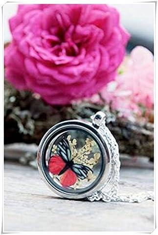 Médaillon Terrarium, botanique, Bijoux, pendentif papillon, fleurs sauvages–Collier Femme