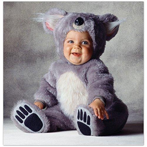 Koala Kostüm Tom Arma für Babys - 3-4 (Tom Arma Baby Kostüme)
