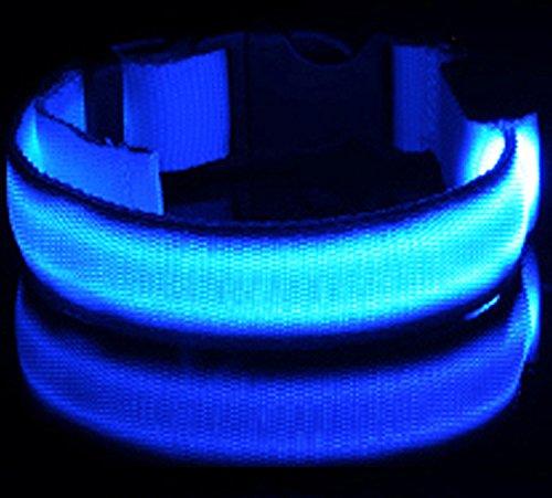 iManson LED Hundehalsband Light – Hunde Leuchthalsband Universell – 3 Modi – L Code(Blau) - 2