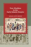 Non-Muslims in the Early Islamic Empire: From Surrender to Coexistence (Cambridge Studies in Islamic Civilization)