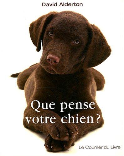 Que pense votre chien : Comprendre le meilleur ami de l'homme