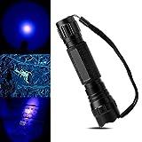 BESTSUN UV-Taschenlampe 365nm UV-LED Blacklight Lampe Taschenlampe für Falschgeld Erkennung, Fotografie, und körperlichen Fluid Zuordnung, Skorpione, Mineralien, Diamanten (inklusive Akku und Ladegerät)