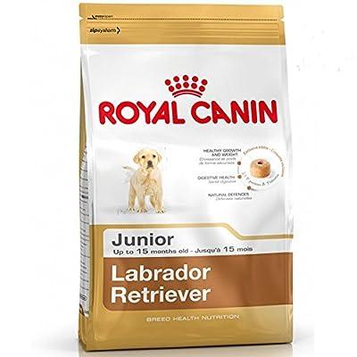 Royal Canin Labrador Retriever Puppy/Junior Food