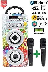 Idea Regalo - DYNASONIC - Altoparlante Bluetooth portatile con Karaoke modalità Eco 025-1 di 10W, 2 microfoni inclusi, Radio FM, Lettore USB e SD (Modello 1), compatibile con computer e telefoni, colore multicolor