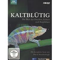 Kaltblütig - Die Welt der Drachen, Echsen und Amphibien [2 DVDs]