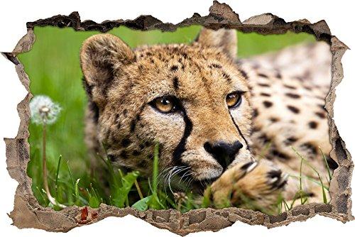 Pixxprint 3D_WD_S2676_92x62 liegender Gepard im Gras Wanddurchbruch 3D Wandtattoo, Vinyl, bunt, 92 x 62 x 0,02 cm