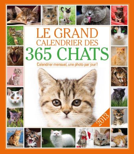 Le grand calendrier des chats 2013