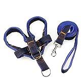 CWQYD Hundegeschirr Kabelsatz Verstellbare Führungen Für Haustiergurte Zugseilzubehör Tierbedarf, Blau, 1,5 X 120 cm