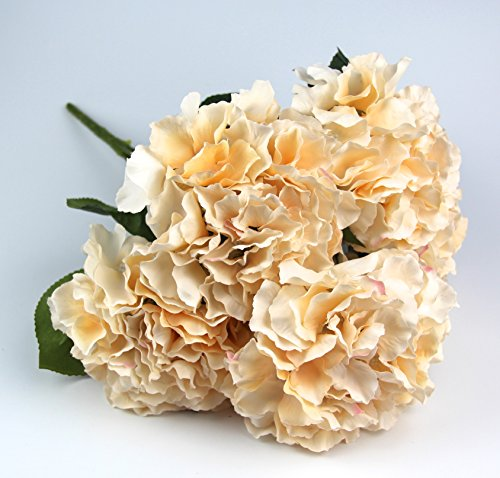 Hortensien Seidenblumen Kunstblumen Kunstpflanzen Hortensie Farbe Raylinedo Blumen, Blumensträuße, Dekoration, 5 große Köpfe