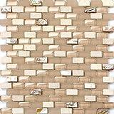 Perlmutt, Glas und Naturstein Mosaik Fliesen Matte mit Ziegelstein Optik (MT0147)