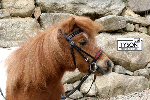 Trense Mini Shetty Minishetty Minipony Glitzer Nase + Stirn Schwarz Rot oder Silberfarben Tysons + Gummizügel Englisch Leder weich (Schwarz Rot, Shetty)