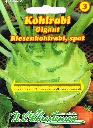 Kohlrabi Gigant (Portion)